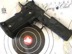 Custom Design Skull Camo Sti 2011 pistol_6