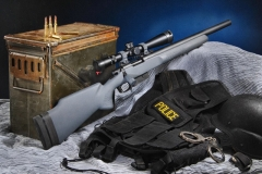 Bolt action sniper/Tactical rifles_3