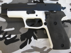 Black and white sig sauer 220_1