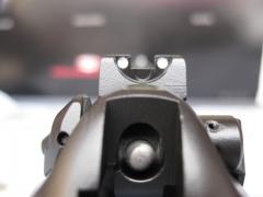 Pistol Sample_12