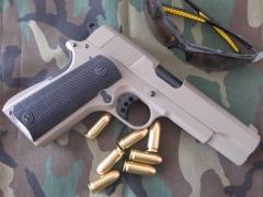 Pistol Sample_20