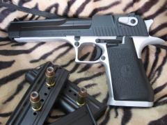 Pistol Sample_22