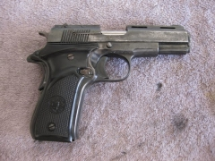Pistol Sample_28