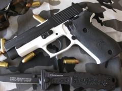Pistol Sample_31