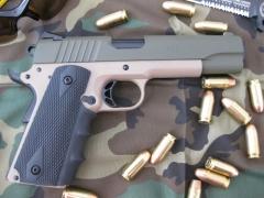 Pistol Sample_33