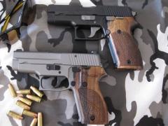 Pistol Sample_41