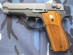 Pistol Sample_51