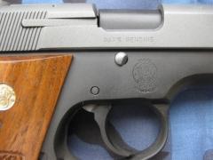Pistol Sample_54