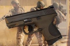 Pistols in Cerakote_1